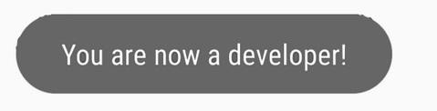 Developer.jpg
