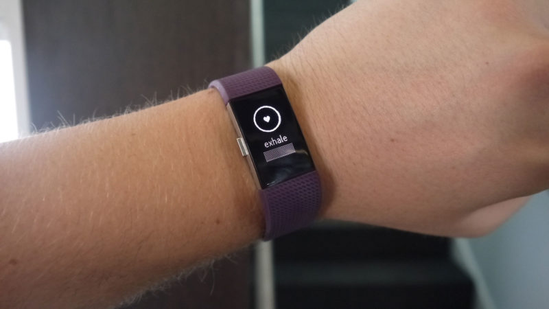 Фитнес-браслет Fitbit Charge 2